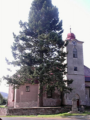 Sv. Michael, archanděl / Kostel sv. Michaela, archanděla, Černý Důl