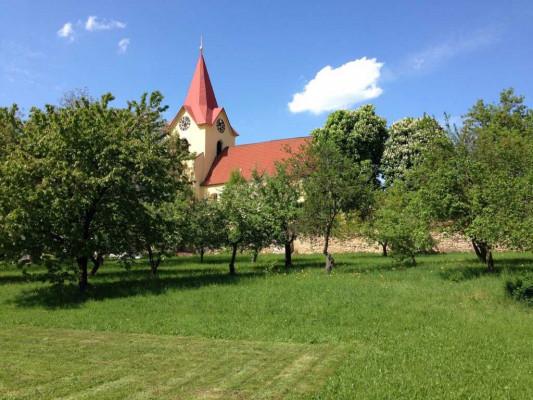 Pohled na kostel z farní zahrady / barevný prostor RGB